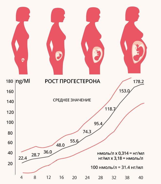 Рост прогестерона при беременности